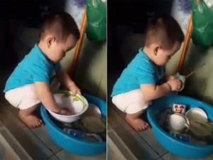 Bạn trẻ - Cuộc sống - Clip bé trai 2 tuổi rửa bát được dân mạng rầm rộ chia sẻ