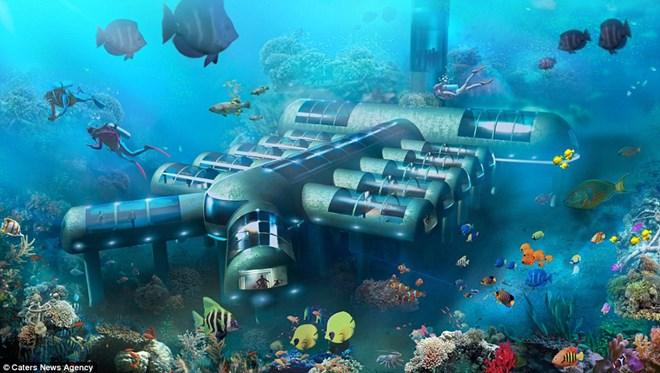 Khách sạn chi 20 triệu USD để du khách ngủ cùng cá - 1