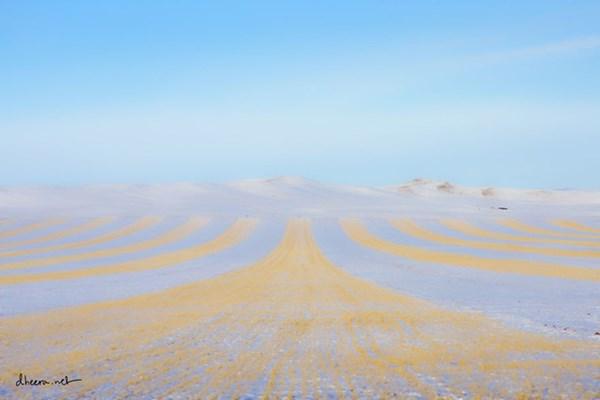 Mùa đông trắng trên thảo nguyên Mông Cổ - 7
