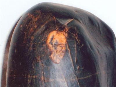 Bí ẩn những hòn đá có khả năng kỳ diệu ở Việt Nam - 5