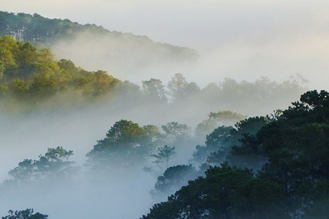 Vào những tinh mơ,Đà Lạt nhẹ nhàng, bềnh bồng như một tấm khăn choàng lớn quấn quanh đỉnh Lang Biang còn đang ngái ngủ.