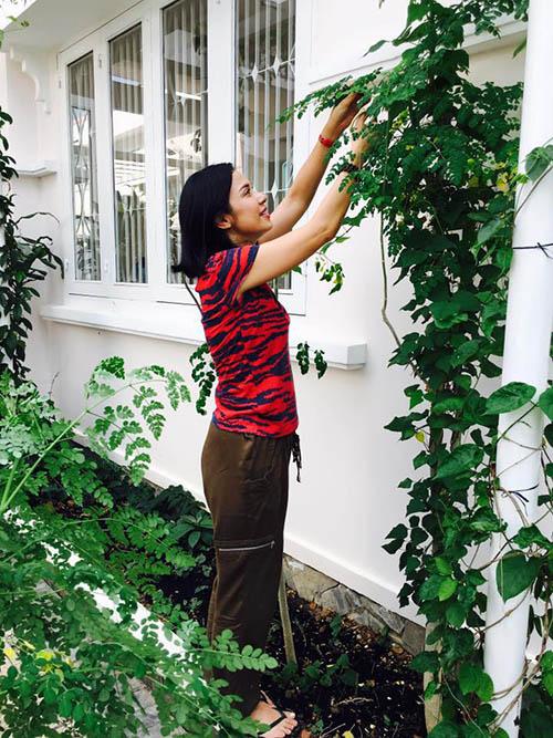 Facebook sao 14/12: Lộ ảnh con trai và 'bà xã' Tùng Dương - 7