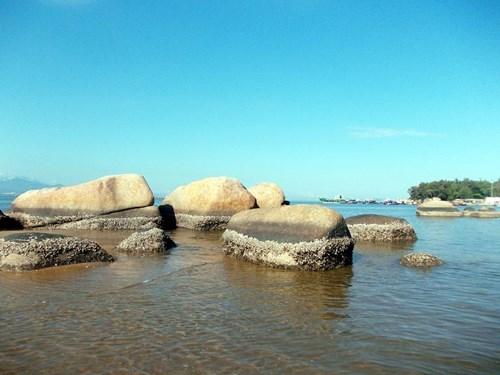 Nghề đập hàu biển hái tiền ở Quảng Ngãi - 2