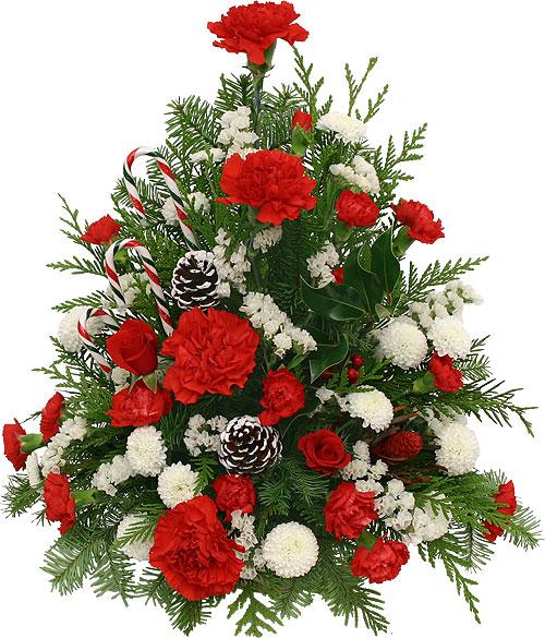Làm cây thông Noel kết hoa lộng lẫy cho mùa Giáng sinh - 12