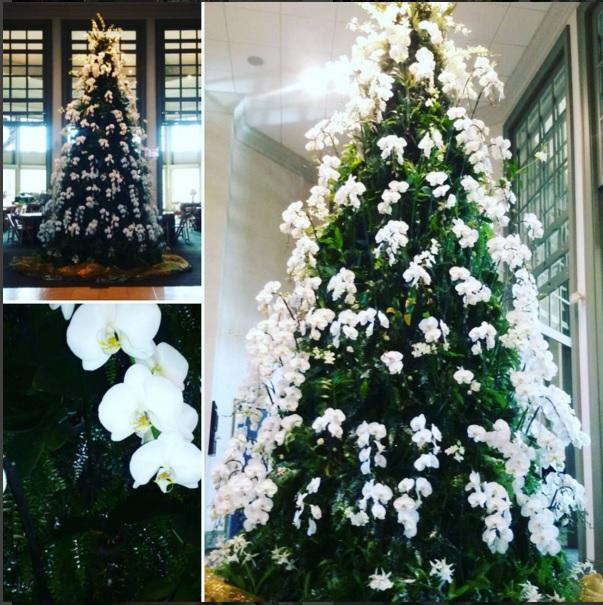 Làm cây thông Noel kết hoa lộng lẫy cho mùa Giáng sinh - 6