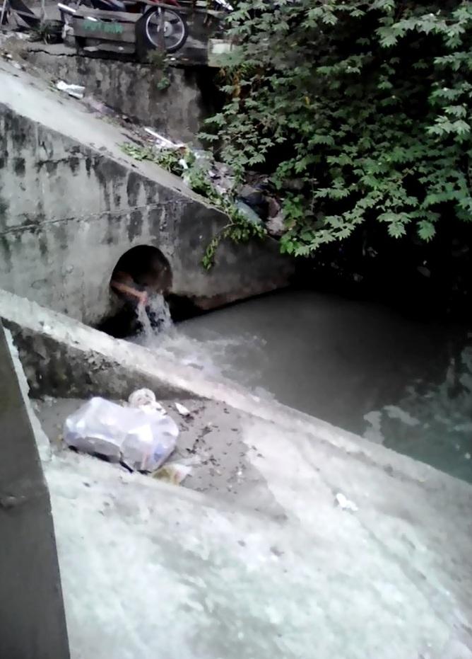 Cô gái nghi ngáo đá nhảy xuống mương tắm nước cống - 1