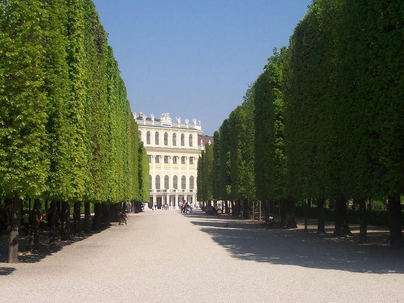 """""""Khu vườn quyền lực"""" ở di sản văn hóa Schönbrunn - 7"""