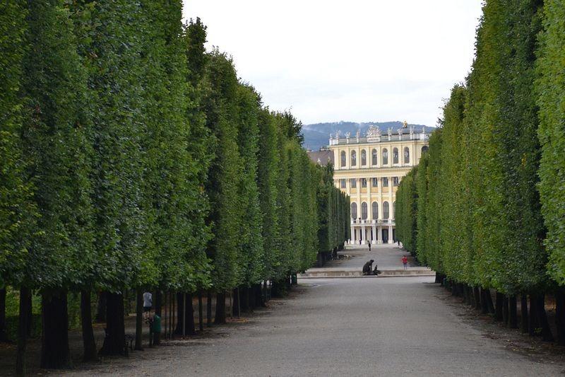 """""""Khu vườn quyền lực"""" ở di sản văn hóa Schönbrunn - 2"""