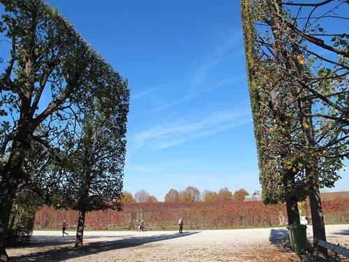 """""""Khu vườn quyền lực"""" ở di sản văn hóa Schönbrunn - 5"""