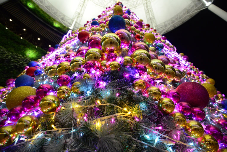 Ảnh: Hà Nội lung linh sắc màu đón Giáng sinh - 8