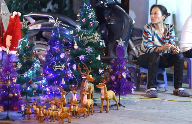 Cây thông mini đắt khách mùa Noel - 3