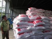 Giá cả - Gạo lậu Thái Lan đổ về Sài Gòn