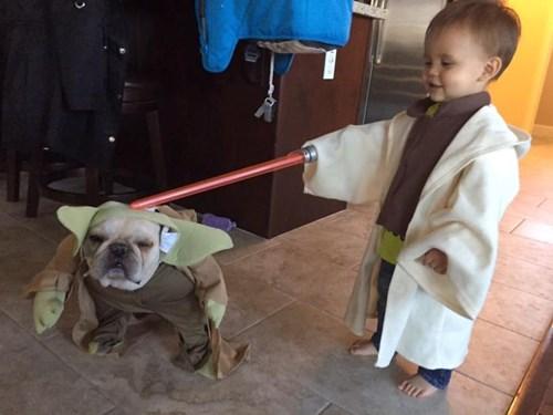Ông chủ Facebook đăng ảnh con gái diện đồ 'Star Wars' - 5