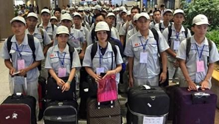 Nguy cơ Hàn Quốc dừng nhận lao động Việt Nam - 1