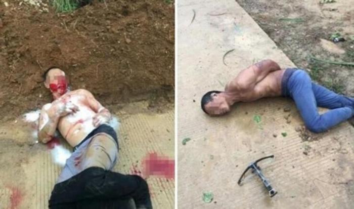 TQ: Trộm chó bị làm nhục, đánh đập dã man đến chết - 1