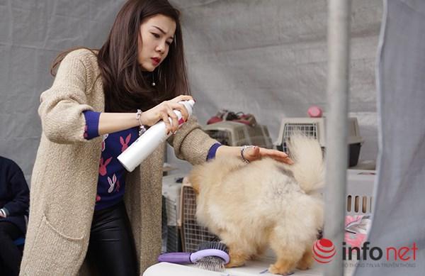 Kỳ công nghề trang điểm cho thú cưng - 7