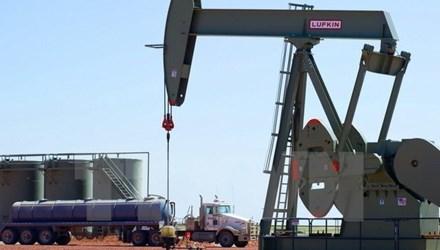 Mỹ muốn kiểm soát thị trường dầu mỏ toàn cầu - 1