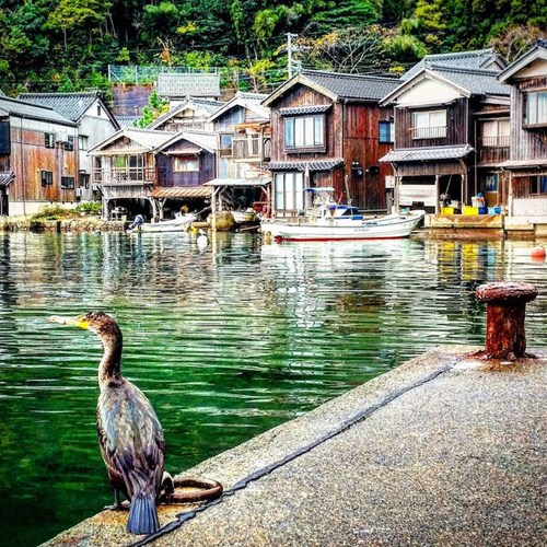 Tận thấy làng chài Nhật Bản đẹp không thua Venice - 10