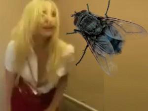 Cô gái tóc vàng và con ruồi bí ẩn