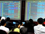 Tài chính - Bất động sản - Ai giàu nhất sàn chứng khoán Việt 2015?