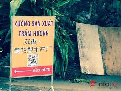 Đà Nẵng: Showroom cấm cửa khách Việt, chỉ đón khách TQ - 10
