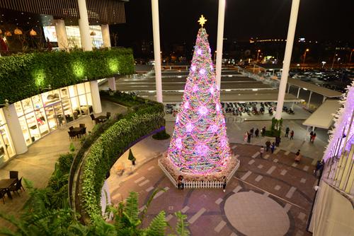 Những điểm chụp ảnh Noel tuyệt đẹp ở Hà Nội - 11