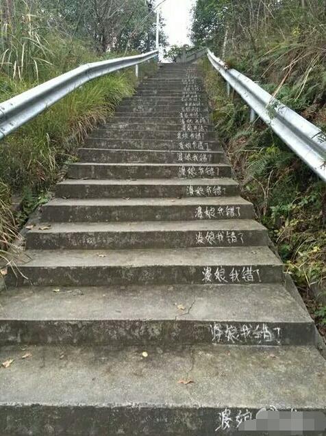 Chồng viết lời xin lỗi vợ trên mấy trăm bậc thang lên núi - 1