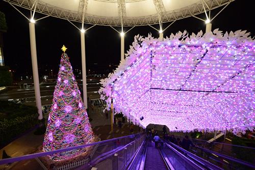 """Ngắm những cây thông Noel """"siêu khủng"""" ở Hà Nội - 1"""
