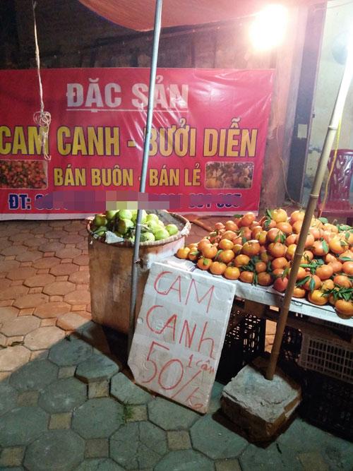 """Cam Canh, bưởi Diễn """"mượn danh"""" bán nhan nhản - 1"""