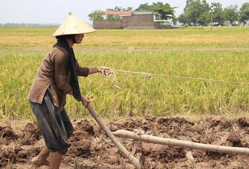 Ngắm người phụ nữ khổ nhất màn ảnh Việt 2015 - 8