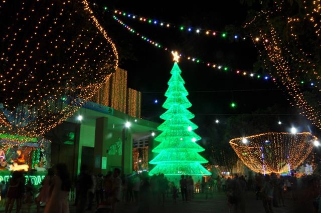 Không khí Giáng sinh an lành tràn ngập phố phường - 8