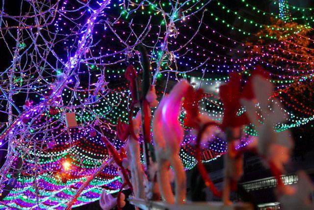 Không khí Giáng sinh an lành tràn ngập phố phường - 2