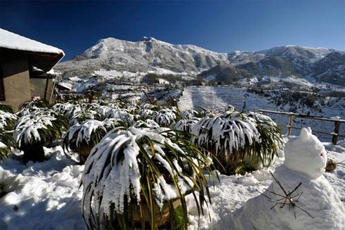 Top những điểm du lịch đẹp nhất vào mùa đông ở Việt Nam
