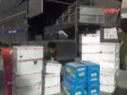 """Video An ninh - Phát hiện 300 thùng trái cây """"ngậm"""" hóa chất TQ"""