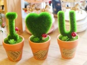 Bạn trẻ - Cuộc sống - Xu hướng quà tặng cây xanh lên ngôi trong giới trẻ