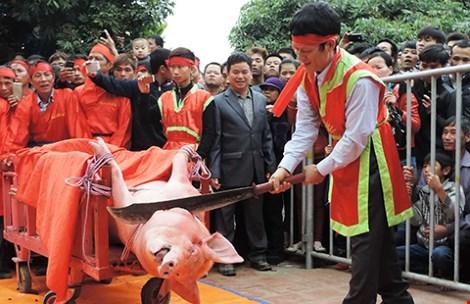 Tiếp tục tổ chức lễ hội chém lợn phản cảm? - 1