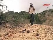 Video An ninh - Tỷ phú từng mang án tù làm giàu từ… phân bò (Phần 1)