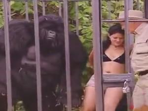 Video clip: Khi chú khỉ troll người đẹp