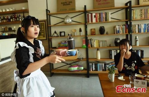 Nhà hàng thuê nữ sinh viên... đút thức ăn cho khách - 2