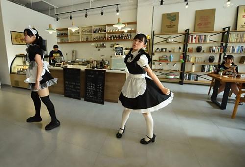 Nhà hàng thuê nữ sinh viên... đút thức ăn cho khách - 3
