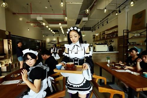 Nhà hàng thuê nữ sinh viên... đút thức ăn cho khách - 4