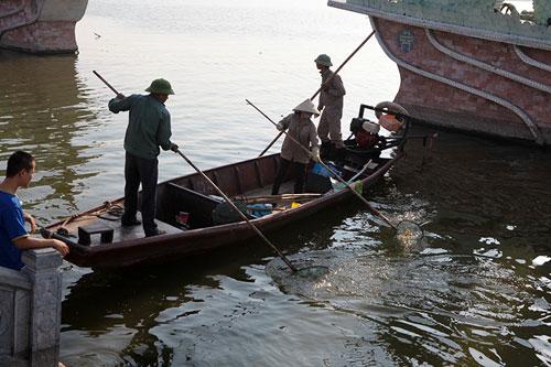 Hà Nội: Cá chết bất thường, nổi trắng ven Hồ Tây - 7