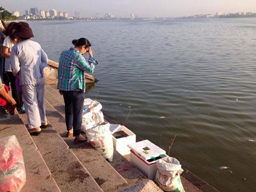 Hà Nội: Cá chết bất thường, nổi trắng ven Hồ Tây - 8