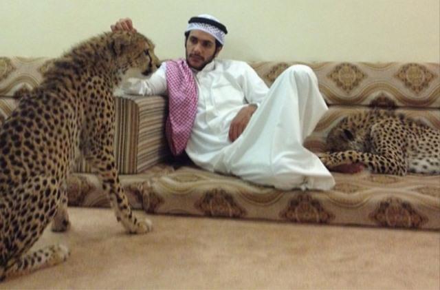 Giới siêu giàu Ả Rập khoe đẳng cấp, báo săn chết hàng loạt - 2