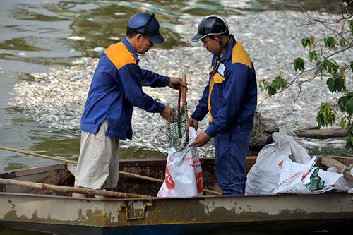 Đặt máy tạo oxy công suất lớn cứu cá Hồ Tây - 3