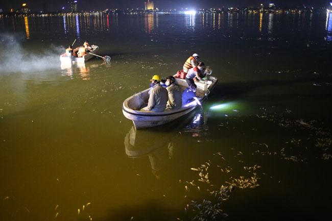 Chùm ảnh: Trắng đêm vớt cá chết ở Hồ Tây - 2