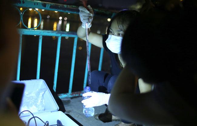 Chùm ảnh: Trắng đêm vớt cá chết ở Hồ Tây - 19