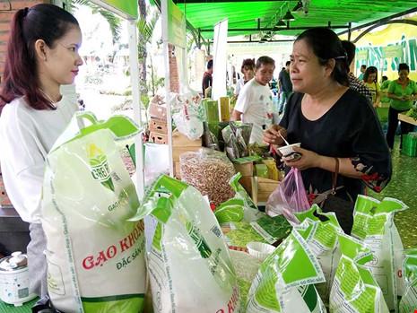 Nhiều lô hàng gạo Việt bị trả về: Khắc phục ra sao? - 1