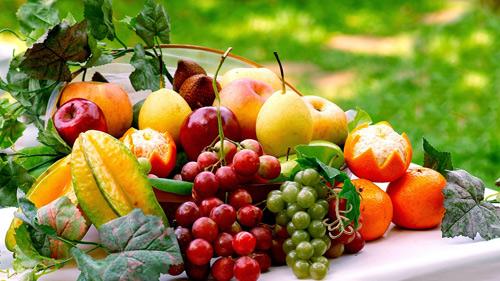 Những vitamin, khoáng chất cần thiết cho xương chắc khỏe - 3