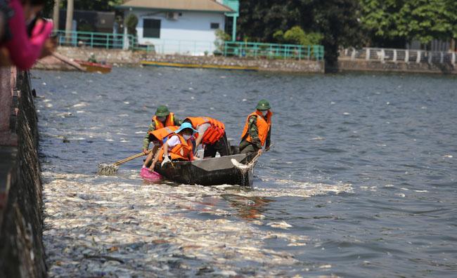 Cá chết ở Hồ Tây: Dân bịt mũi, quán đóng cửa vì mùi hôi thối - 12